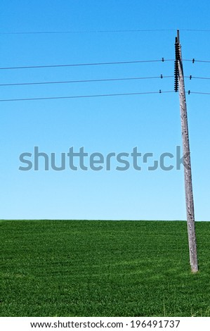A green field with a clear blue sky with a utility pole and wires stretching across. - stock photo