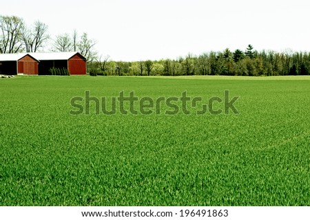 A green field with buildings and trees in the background. - stock photo