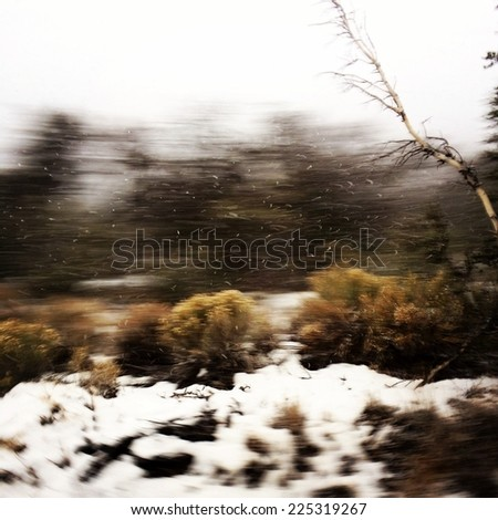 A ground covered in snow during the winter. - stock photo