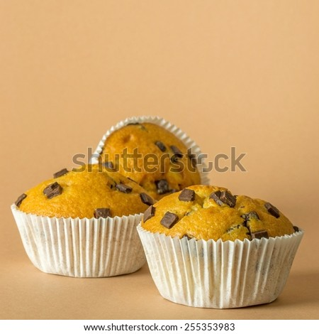 A group of chocolate chip muffins on brown background with copy space for your text - stock photo