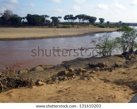 A group of Hippos in a river in Kenya - stock photo