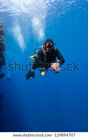 A group of SCUBA divers swim along a vertical wall in blue water - stock photo