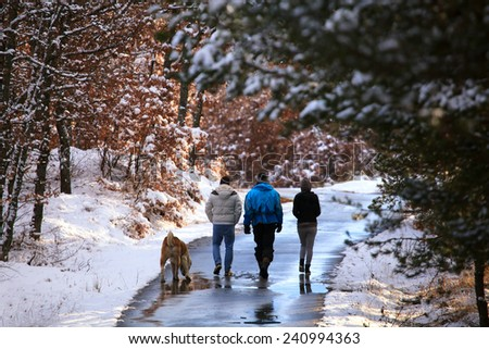 A group of tourists and dog on a winter walk in the winter  forest path  - stock photo
