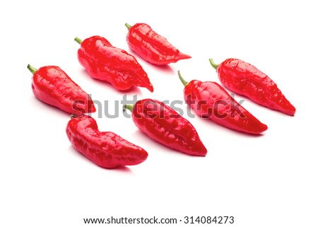 A group of ultra hot red ghost chilis on white - stock photo