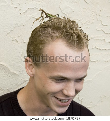 A guy with a praying mantis on his head! - stock photo
