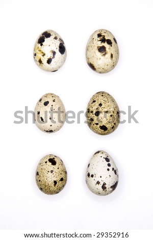 A half dozen small, speckled quail eggs isolated against a white background. - stock photo