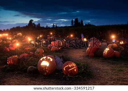 A Halloween path wends it's way through hundreds of lit jack-o-lanterns - stock photo