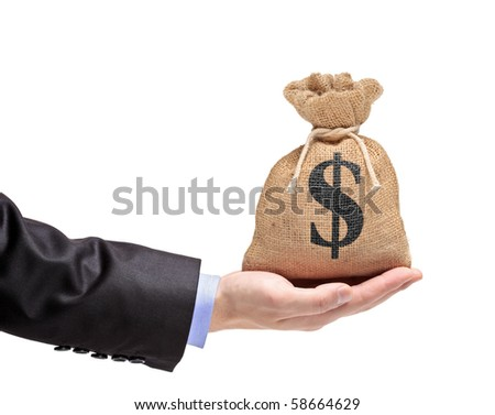 A hand holding a money bag isolated on white background - stock photo