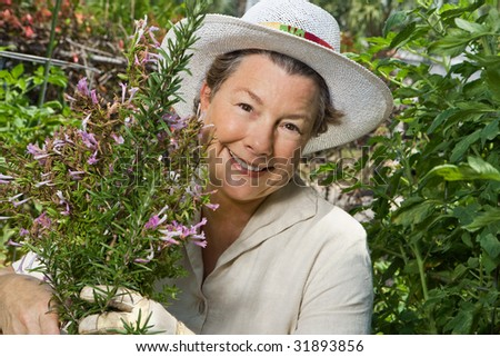 A happy mature woman thinning out the rosemary in her garden. Closeup shot. - stock photo