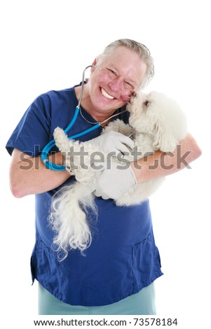 a Happy Veterinarian gets a kiss from one of his patients as he checks her heart beat and lungs - stock photo