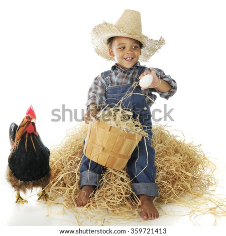 A happy young farm boy examining eggs from his basket while sitting on a hay stack.  A rooster stands nearby.  On a white background. - stock photo