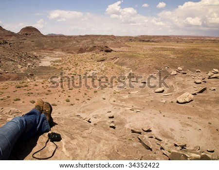 A hiker takes a break to look at the scenery in  Arizona's Petrified Forest National Park. - stock photo