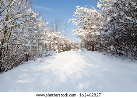 A hiking trail in Jena, Thuringia, in winter snow - stock photo