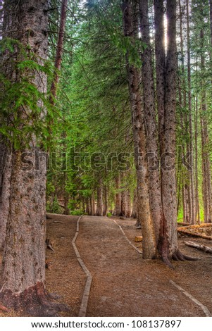 A hiking trail through the Wasatch Mountains . - stock photo
