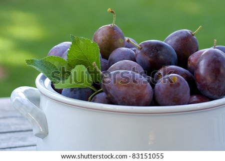 A horizontal view of very juicy plums in a bowl - stock photo