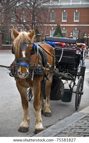 "A horse and carriage in ""old city"" Philadelphia outside of Independence Hall. - stock photo"