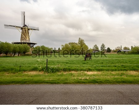A horse eating fresh green grass near the old mill along the road - stock photo