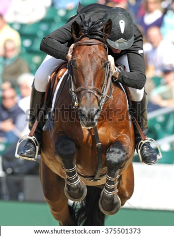 A horse jumping in a horse show - stock photo