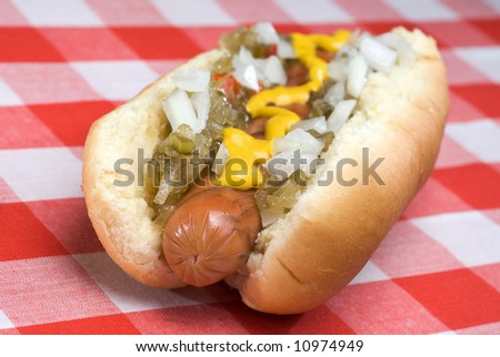 A hotdog fully garnished with onions, relish and mustard on a picnic table. - stock photo