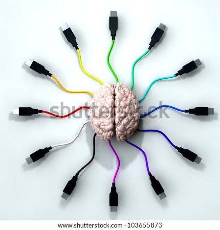 A human brain with multi-colored usb cable extending and reaching out from its center - stock photo
