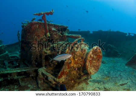 A jack fish inspects the deck of the MV Commerce off the coast of Anguilla - stock photo