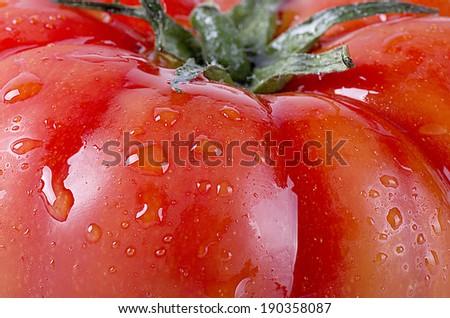 A juicy tomatoe macro shot  - stock photo