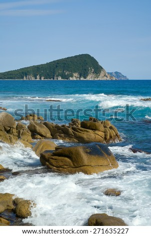 A landscape on sea: stones; surf and small green island on horizon. - stock photo