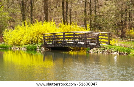a landscaping scenery at botanic garden in US - stock photo