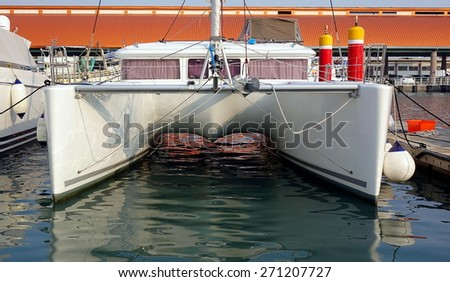 A large catamaran yacht with a double hull is anchored at a marina