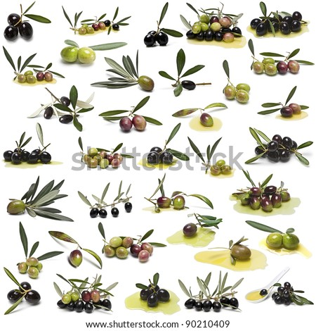 A large collection of photos of different varieties of olives isolated on white background. - stock photo