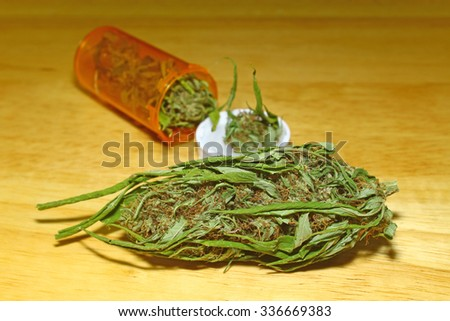 A large female marijuana bud along with a pill bottle of fresh buds spilling out onto the table behind the bud - stock photo