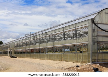 A large greenhouse used to grow different annuals and perennials.  - stock photo