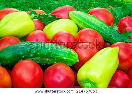 A large number mature bright red tomato, pepper, cucumbers lie on a shop show-window - stock photo