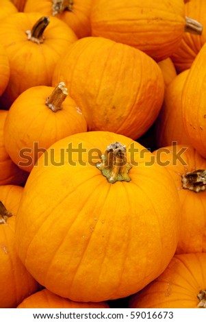 A large stack of pumpkins in the vertical format. - stock photo