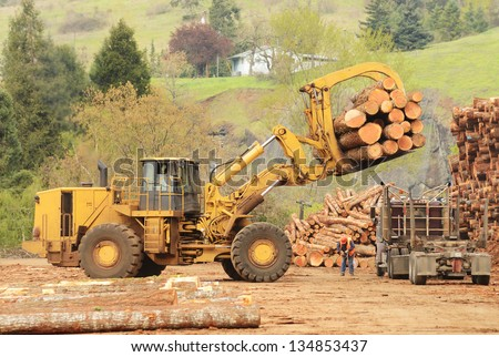 A large wheeled front end log loader unloading a log truck at a log yard at a lumber processing mill that specializes in small logs - stock photo