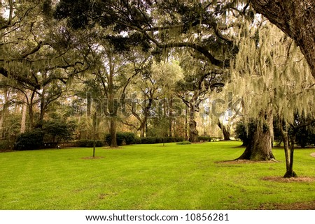 A lawn of rich green grass in the shade of old oak trees draped with spanish moss - stock photo