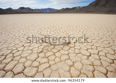 a left dead tree in drought ground in racetrack playa, death valley national park - stock photo