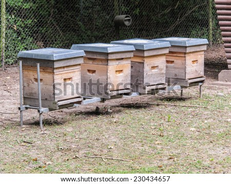 A lines of beehives in an apiary in a field.  These are National styles hives. - stock photo