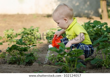 a little boy pouring flowers - stock photo