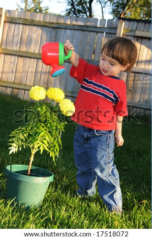 A little boy waters three marigold flowers with a small watering can in his backyard - stock photo