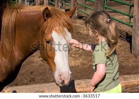 a little girl petting a beautiful horse - stock photo