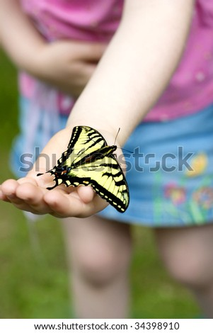a little girls hand holding a swallowtail butterfly - stock photo