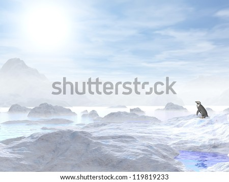 A little penguin standing in the middle of icebergs and looking at the sun - stock photo