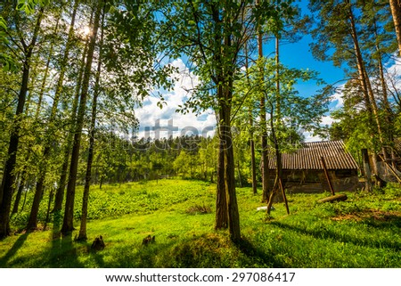 A log cabin on the shore of forest lake in the sun - stock photo