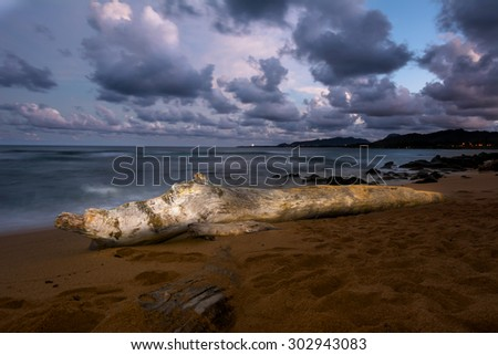 A log on a beach is Hawaii is painted with light at nighttime during a long shutter speed, creating a surreal, peaceful ambiance - stock photo