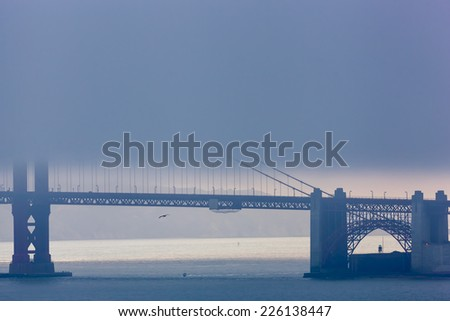 A lonely brown pelican and a single motorboat cross under San Francisco's Golden Gate Bridge which is partially obscured by fog. - stock photo