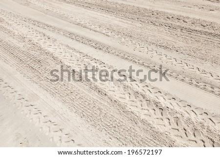 A lot of ATV tracks on the white sand beach - stock photo