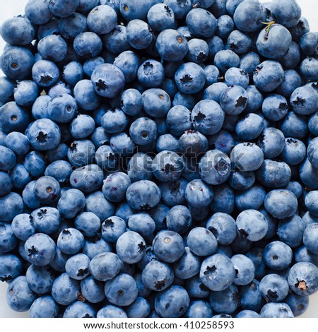 a lot of blueberry as a background - stock photo