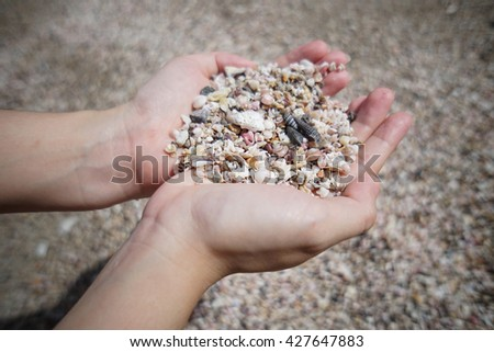 a lot of broken small corals, scrap of sea shell on two hand with blur background - stock photo