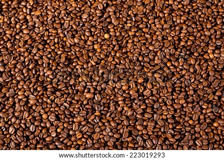 a lot of coffee beans  - stock photo